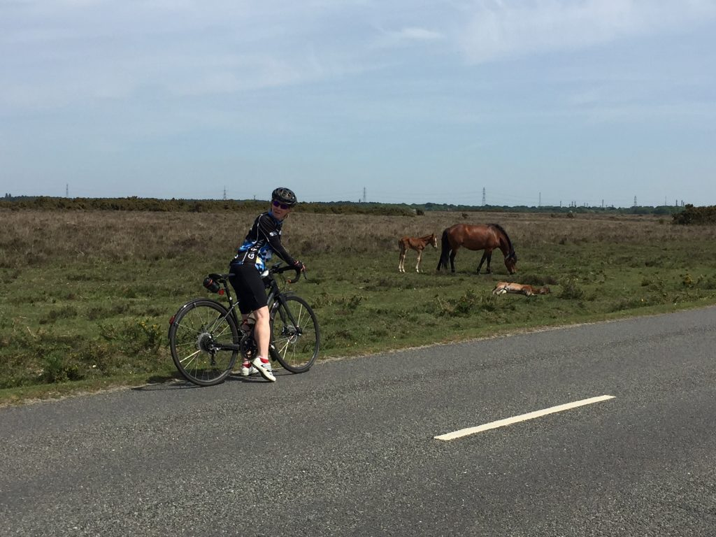 Teri and a New Forest pony