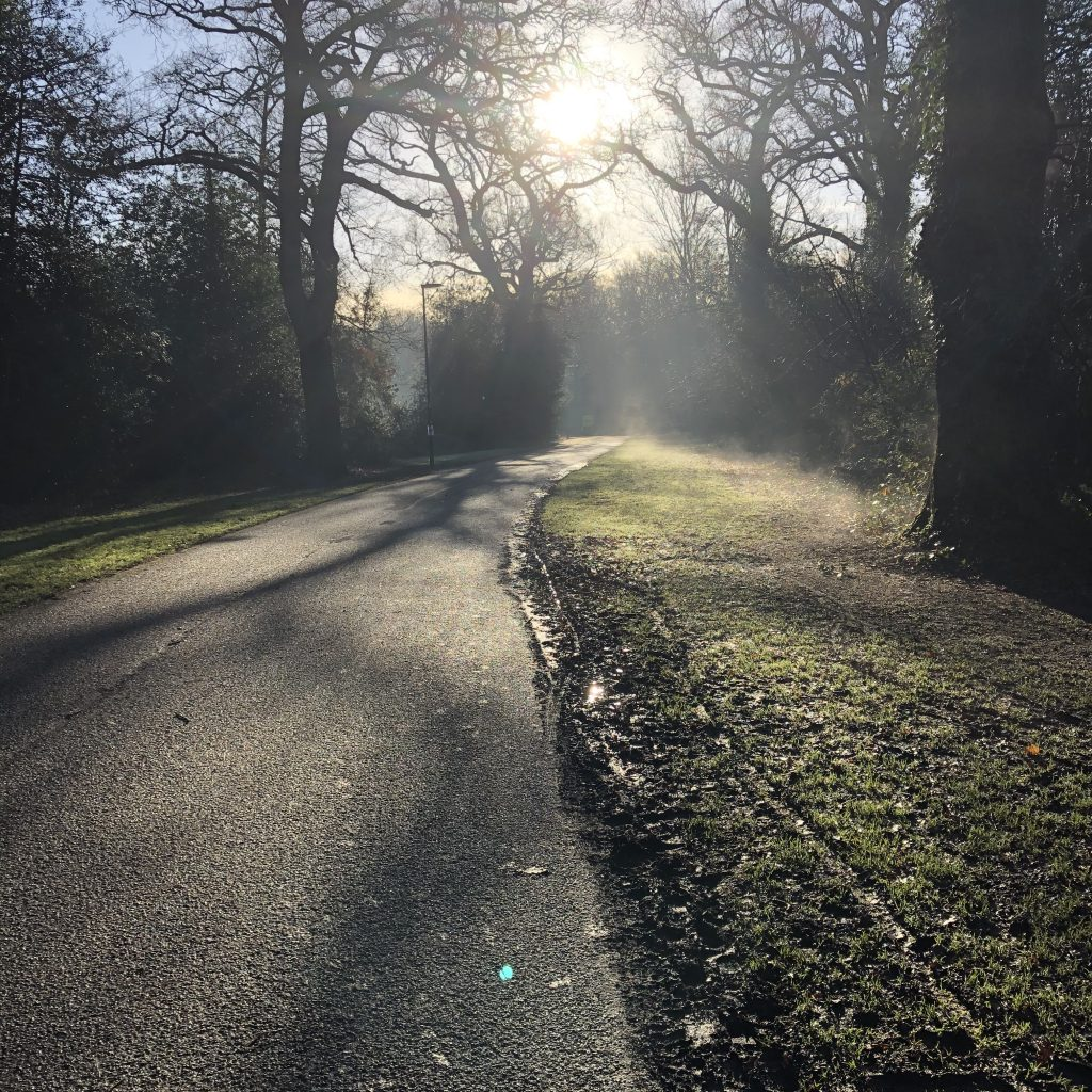 Sun shining through the trees. Mist is rising from the frosty grass. There is no-one on the path.