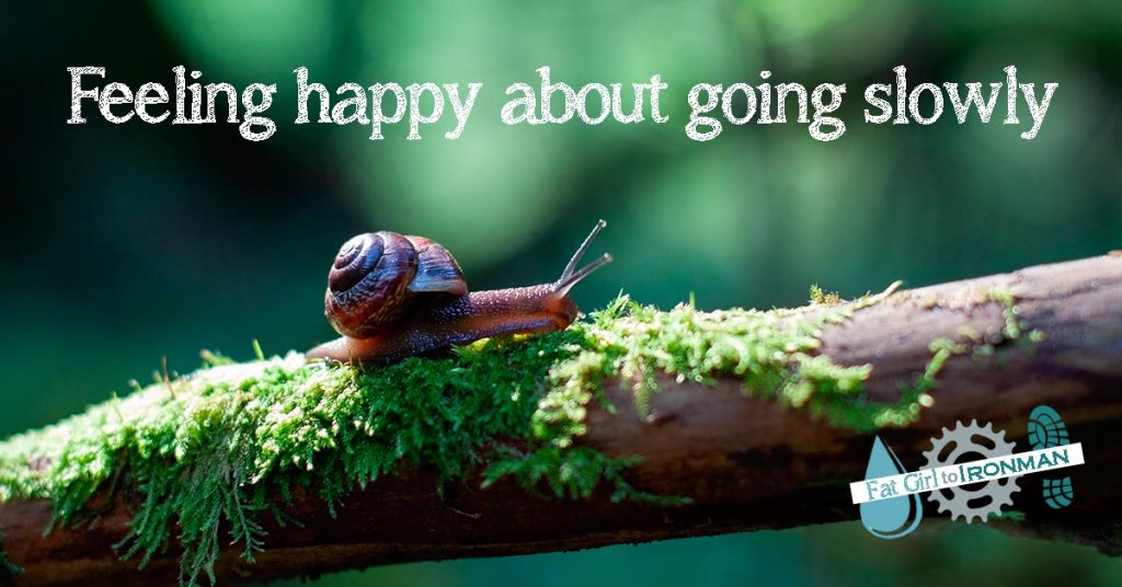 An image of a snail on a mossy branch with the slogan 'Feeling happy about going slowly'.